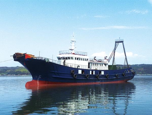 船舶动力案例